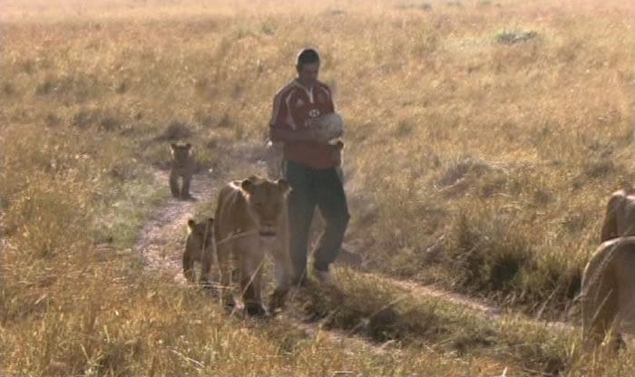 HSBC: Lions Sponsorship Idents